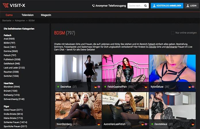 BDSM Rubrik auf Visit-X